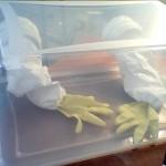 boite à gants
