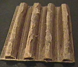 culture mycélium carton